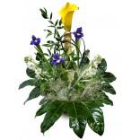 Cos cu Flori - Aranjament Iris, Cale, Sampanie